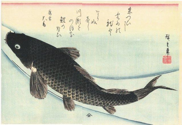 Hiroshige Ando, Swimming Carp