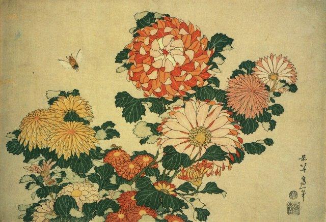 Hokusai Katsushika (1760-1849) Chrysanthemums and bee