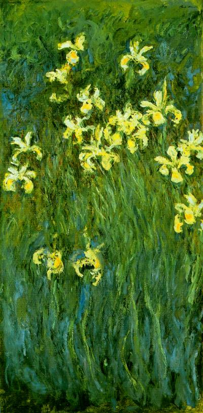 Monet Yellow Irises
